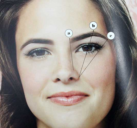 This is the standard guide for achieving your best brow shape.