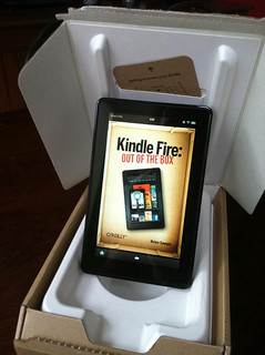 Amazon Fire Image Source: Brian Sawyer